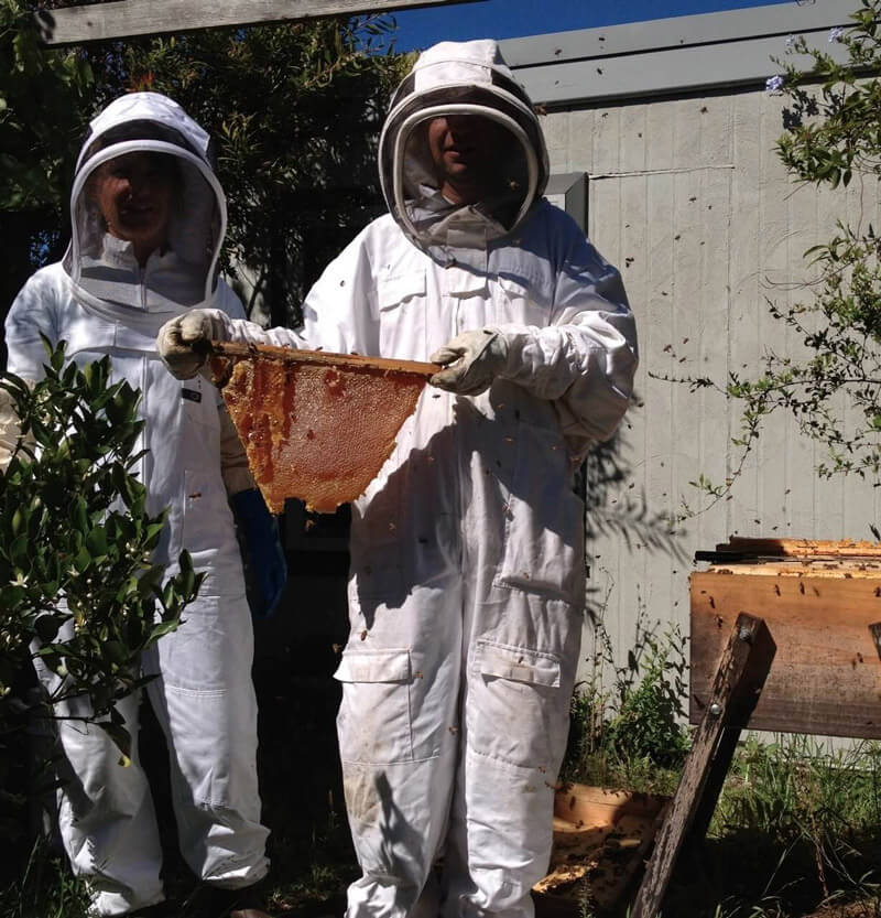 What Is Natural Beekeeping