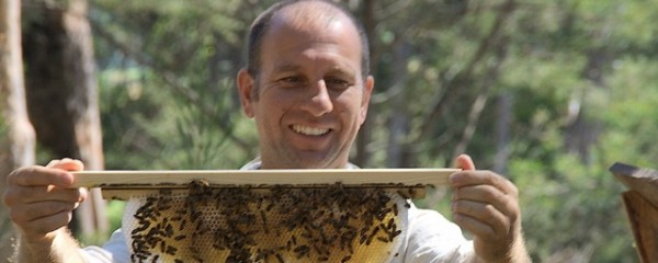 What is Natural Beekeeping?