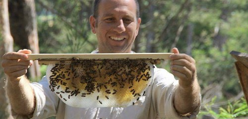 Natural Beekeeping Resources