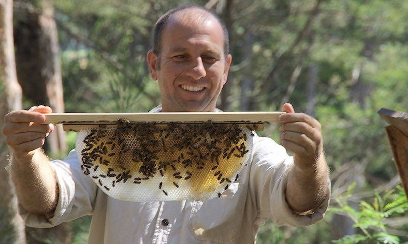 natural beekeeping course melbourne april