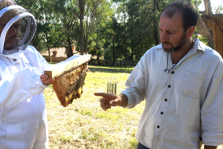 Beekeeping Course Warranwood Melbourne