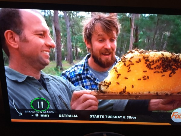 Adrian Iodice from Beekeeping Naturally on River Cottage Australia
