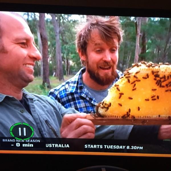 Natural Beekeeping on River Cottage Australia – Tuesday 16th June