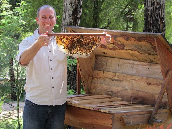 A Busy Beekeeper – Natural Beekeeping