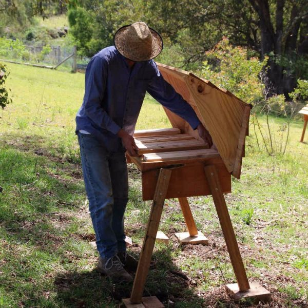 Natural Beekeeping on Earth Matters